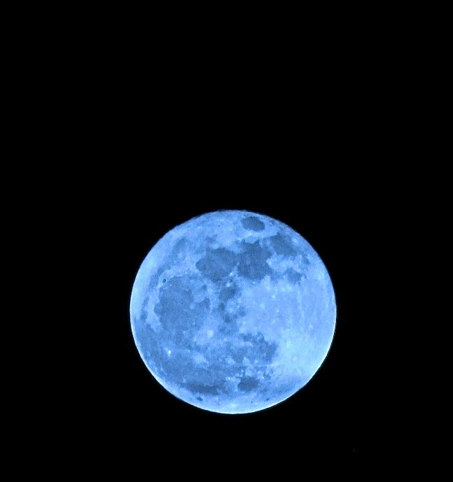 """Or it can take on a cool-ness  look (but this is not a true """"Blue Moon"""")...."""