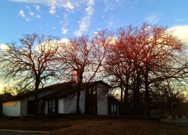 Sunrise lights up the neighbor's trees....