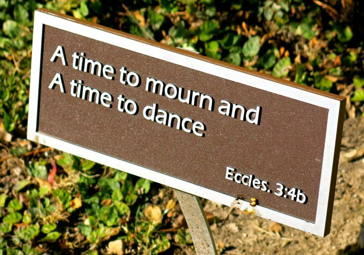 There were probably 10 or so plaques scattered about the garden...they made me pause and let a few moments of the day slip by