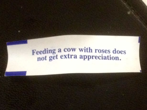 What in the wide, wide world of fortune cookies does this mean?