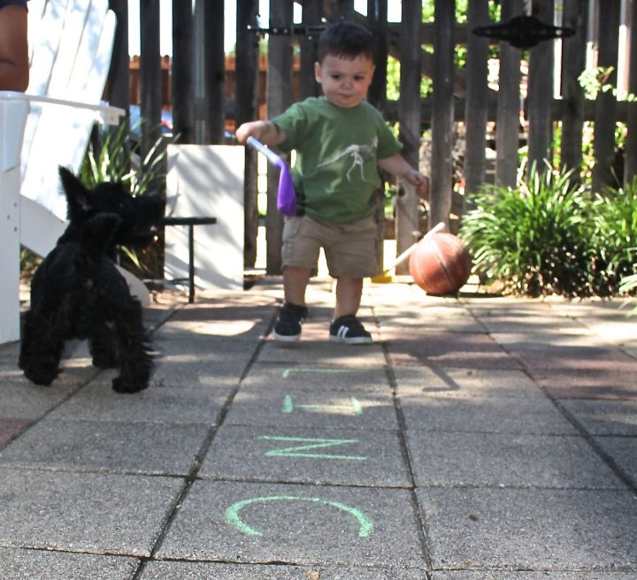 A boy (grandson) outdoors, a puppy infatuated with someone of similar size and ornery spirit, a golf stick, and sidewalk chalk ...Living life enjoyably and experiencing the world through his perspective