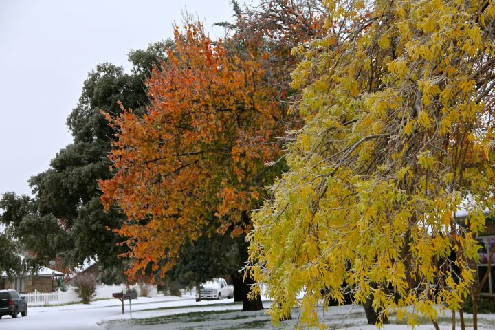 I stood and marveled (not for too long) at the contrast of fall color and why white of snow (ice)….