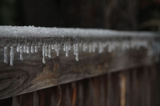 Even my fence was icicle'd….