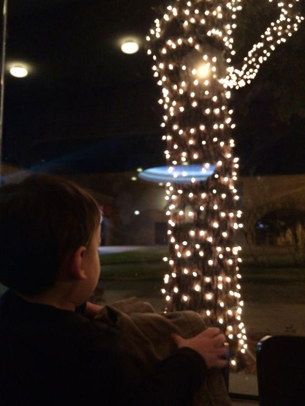 We all enjoyed a Latin dinner at Nazca Kitchen - Lincoln was wow'd by the glowing tree trunks out front….