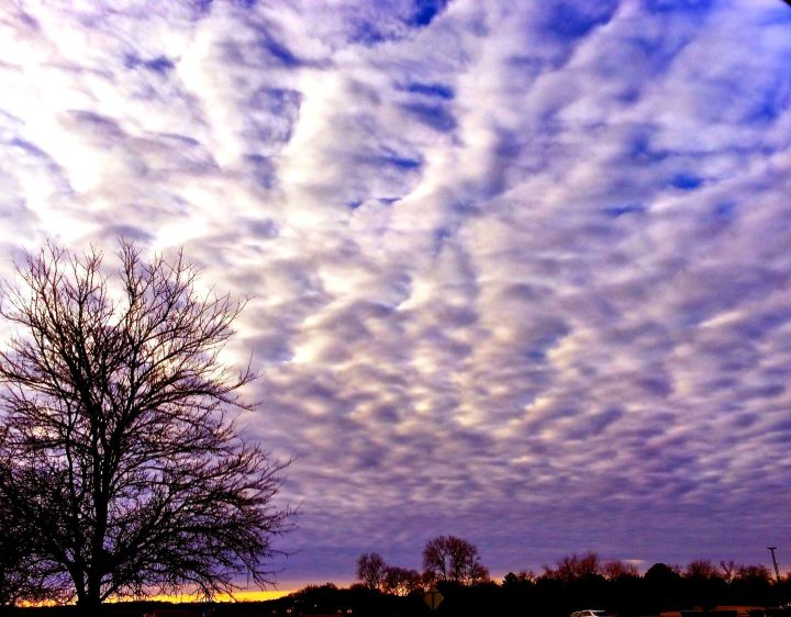 Early morning clouds take their turn making a  statement about this crazy winter weather….