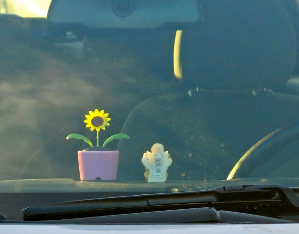 Sometimes its the simplicity of the gesture that might calm the mind…in Dallas rush hour traffic (these items fixed on the dash of a compact car)