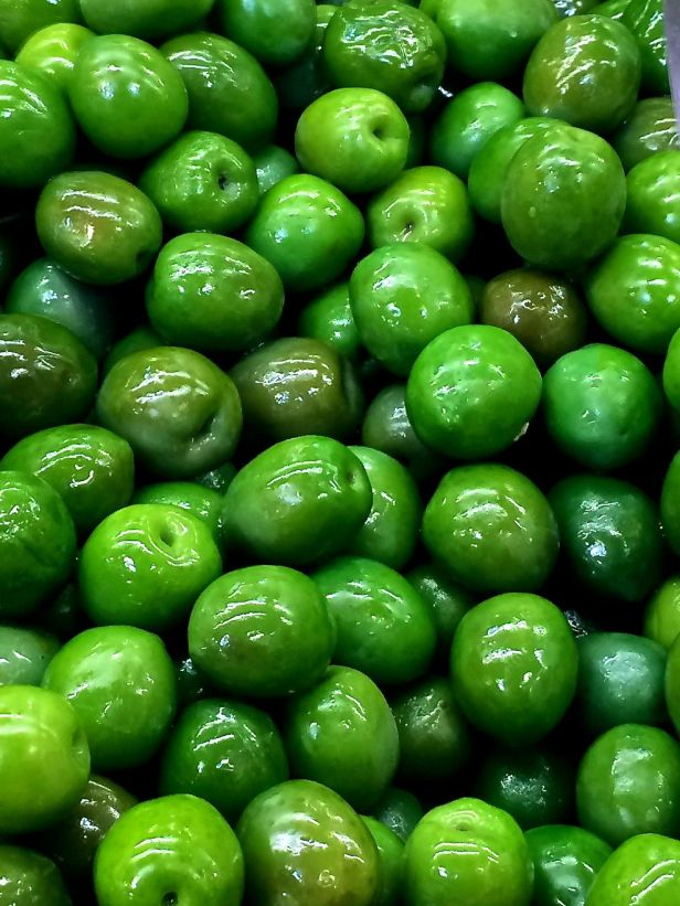 Oily Olives