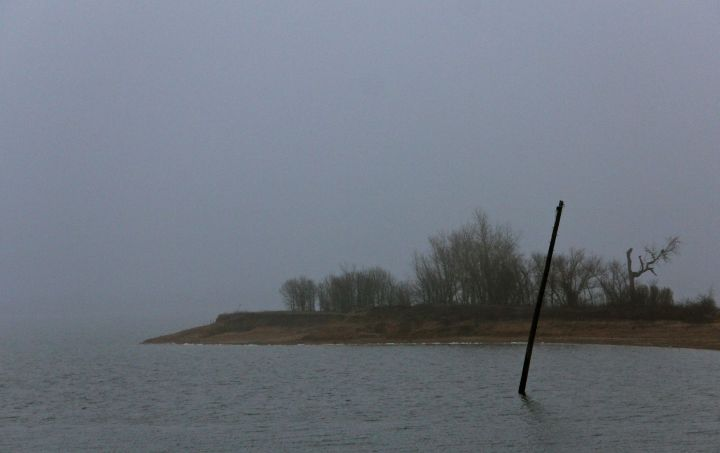 The island is now a peninsula…with some interesting vegetation (and non-green) shapes on a foggy Sunday morning….