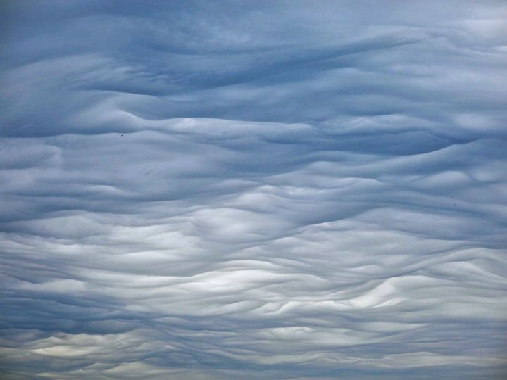 Someone more knowledgable than me needs to tell me what these softy , billowy, mattressey clouds are really called.